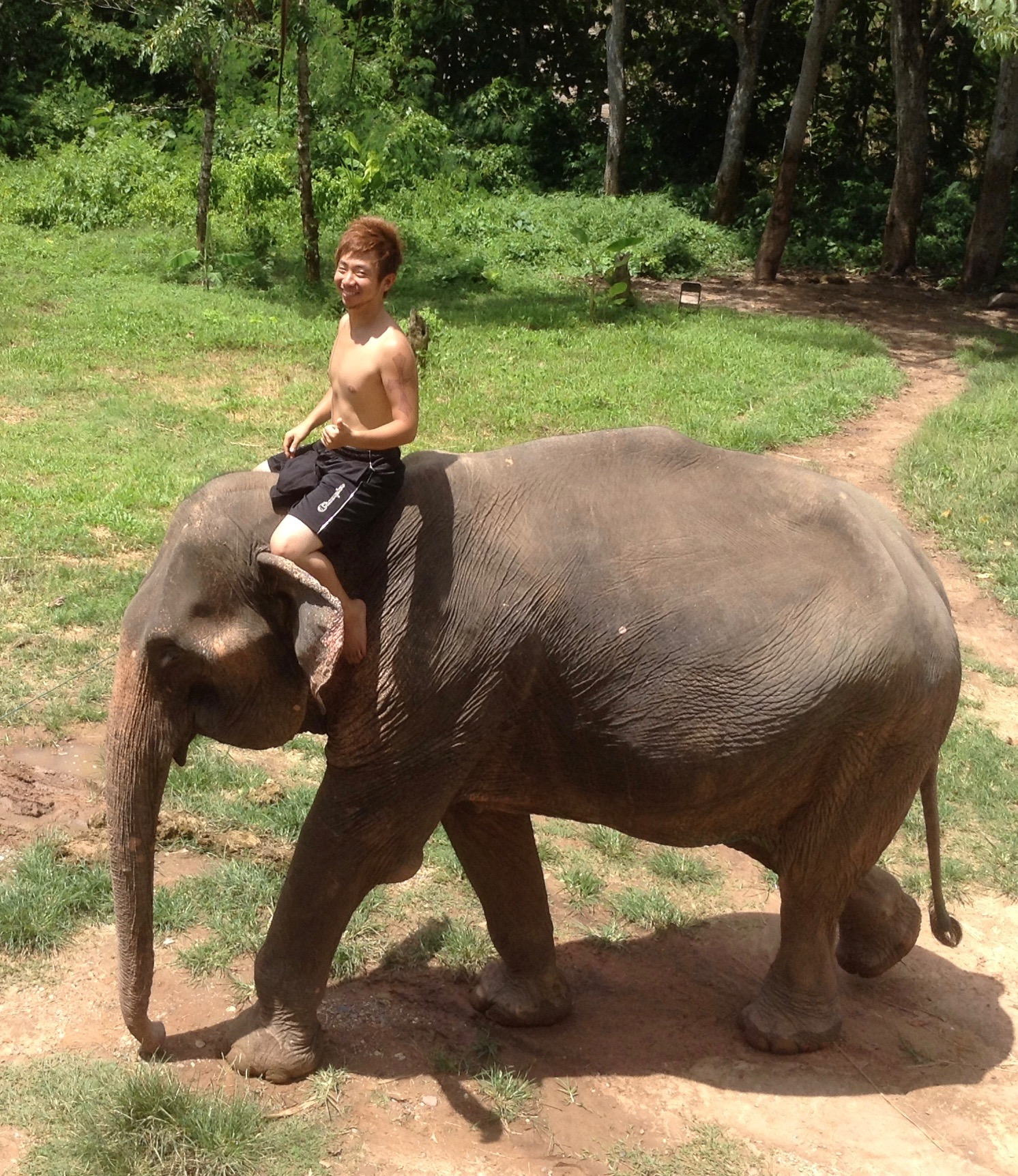 riding on elephant