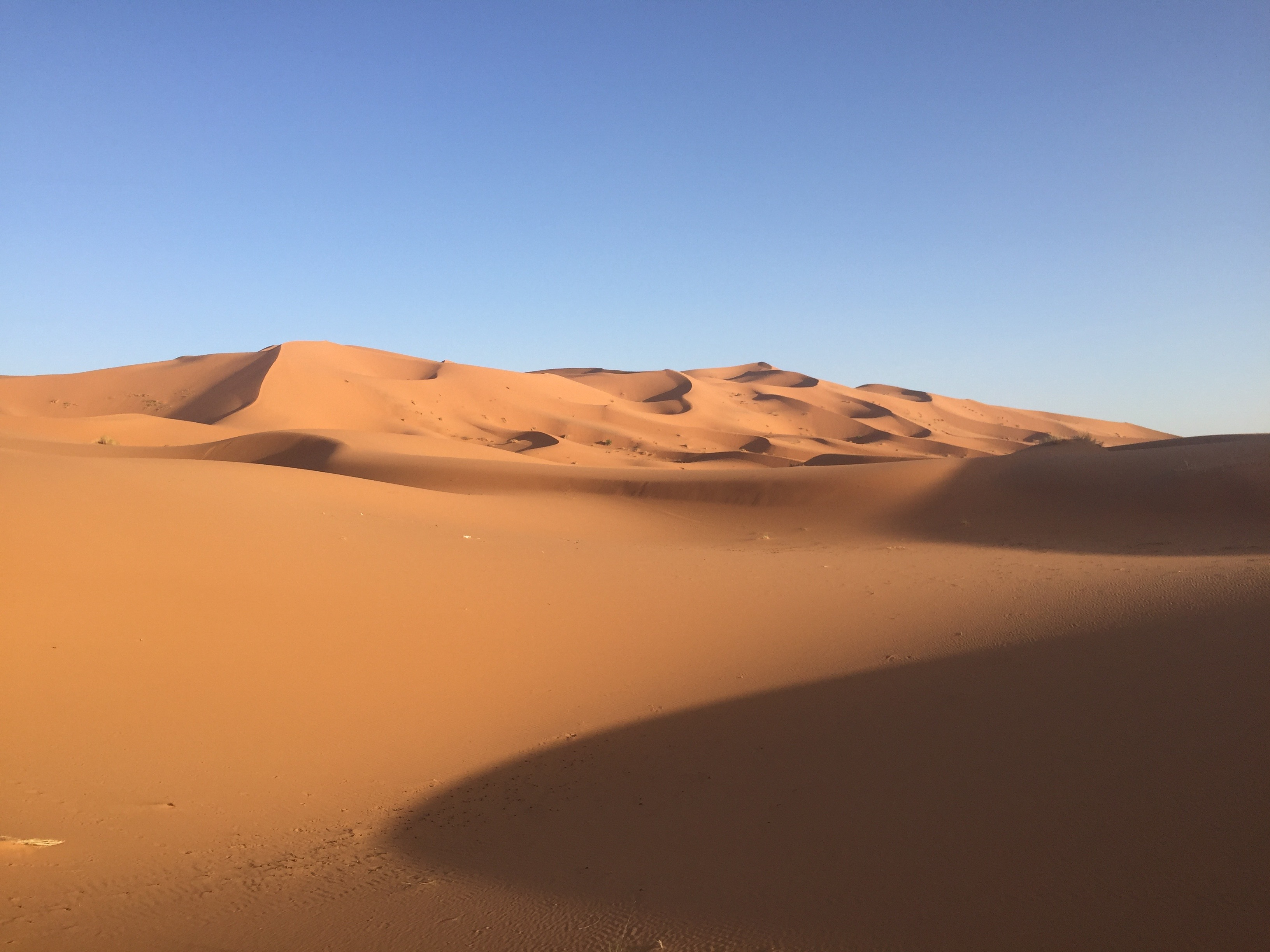 これぞアフリカの秘境!長年の夢のサハラ砂漠に行ってきた!