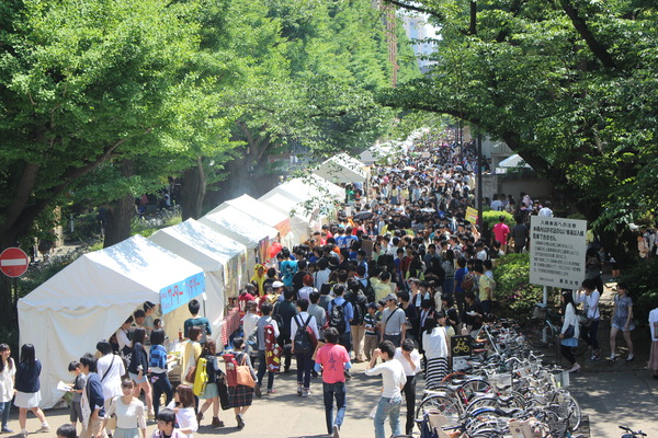 may-festival