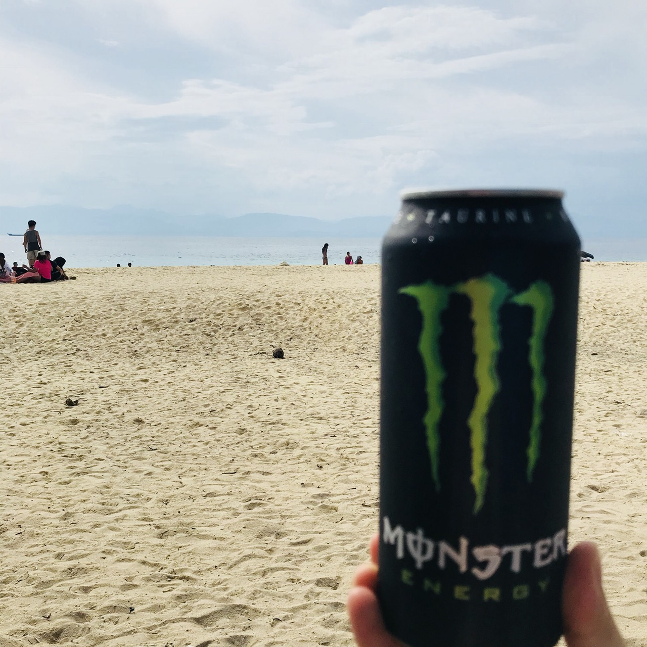 moalboal and monster